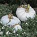 The White Collection of Glass Pumpkins and Squash