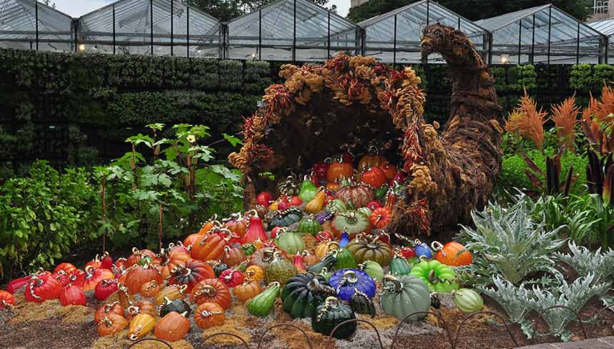 Glass Exhibition at the Atlanta Botanical Garden featuring a Giant Cornucopia of Cohn-Stone Pumpkins